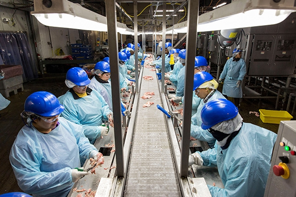 Reporting Grants - Assembly Line